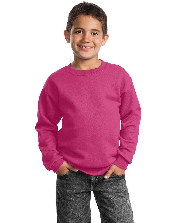 Port & Company PC90Y Youth Crewneck Sweatshirt